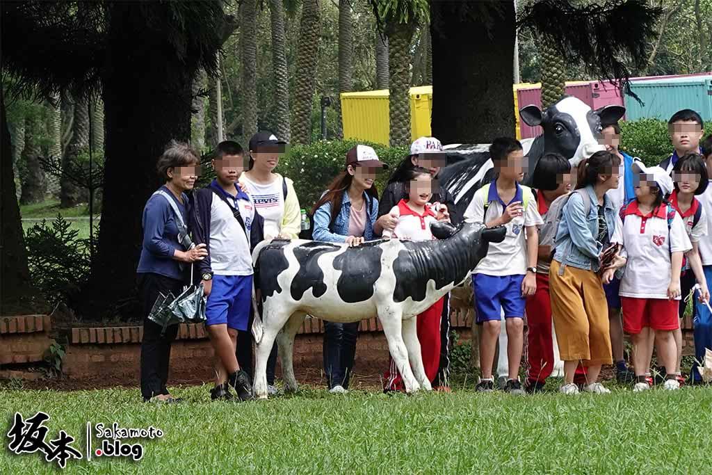 埔心牧場半日遊,看最萌賽豬現擠牛奶 5